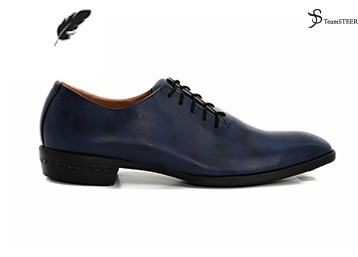 TS Homme Chic _ Navy